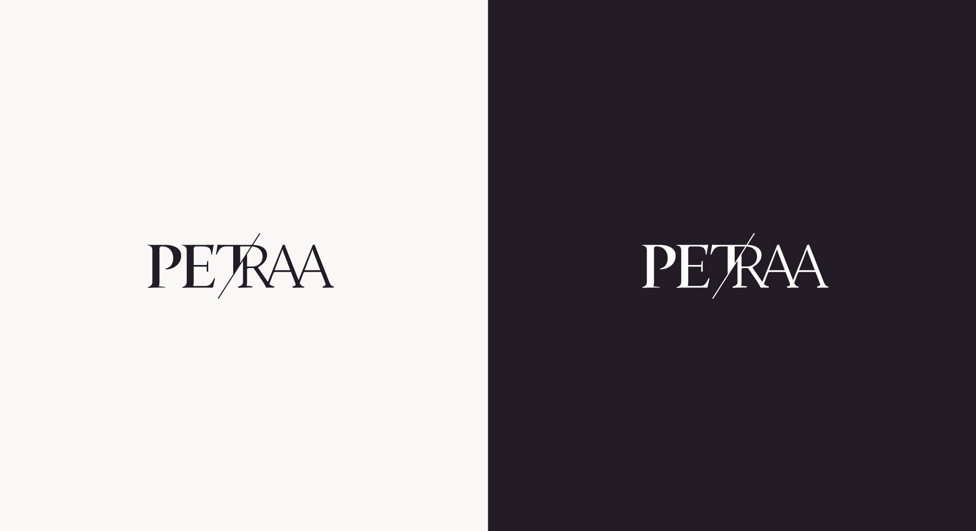 banner petra